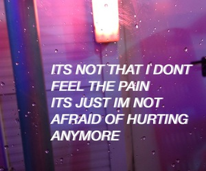 purple, quote, and grunge image
