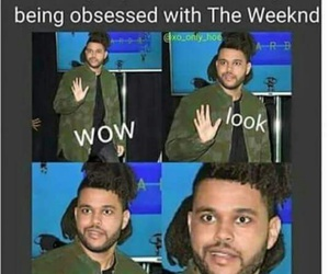 fan, funny, and xo image