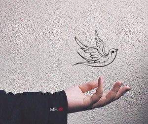bird and hand image