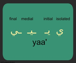 alphabet, learn, and arabic image