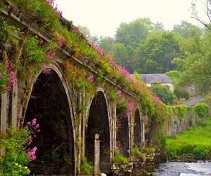 bridge, flowers, and ireland image