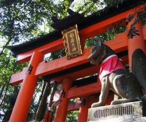 japão image
