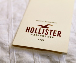 brands, fitch, and hollister image