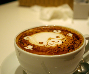 bear, cafe, and cappuccino image