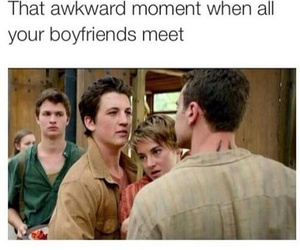 funny, divergent, and insurgent image