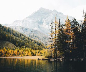 beautiful, indie, and nature image