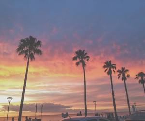 palms, photography, and sunset image