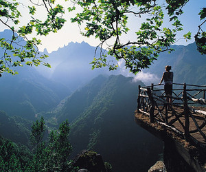 madeira, portugal, and nature image