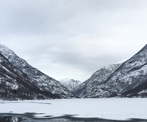 cold, fjord, and ice image