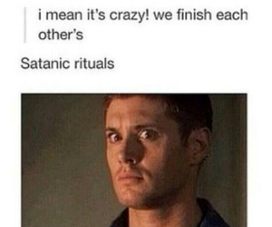 supernatural, tumblr, and funny image