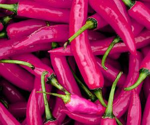 pink, purple, and pepper image