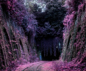 purple, pink, and travel image