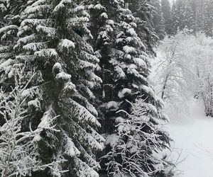 hiver, snow, and montagne image