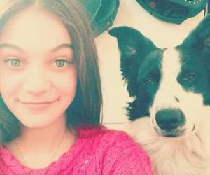 Carolina, dog, and domenech image