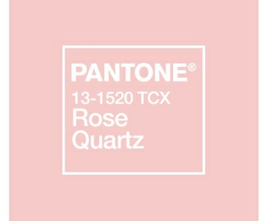 aesthetic, pantone, and pink image