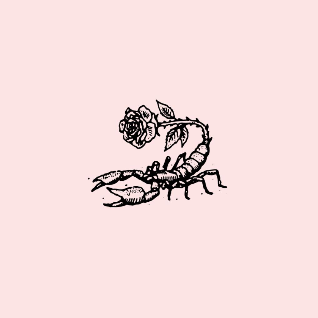 rose, scorpio, and art image