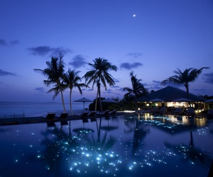 night, paradise, and blue image