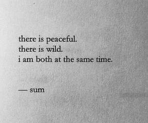 quotes, wild, and peaceful image