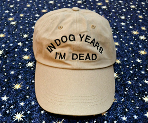 hat, dog, and quotes image