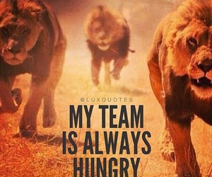 lion, hungry, and quote image