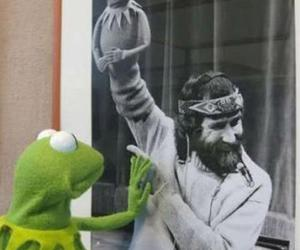 frog, muppets, and gustavo image