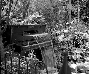 flowers, piano, and garden image