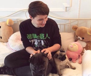 dan howell, danisnotonfire, and phan image