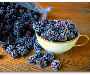 blackberries, body, and fitness image