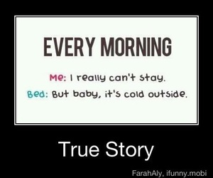 bed and funny image