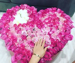 flowers, pink, and beauty image