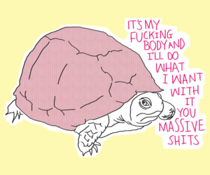 turtle, quotes, and body image