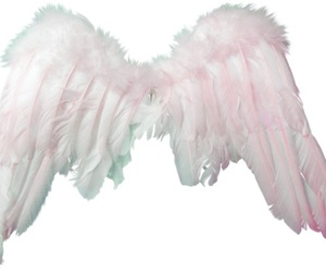 angel, overlay, and png image