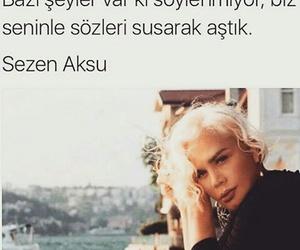 ask, sezen aksu, and sözler image