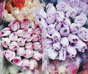 tulips, flowers, and rose image