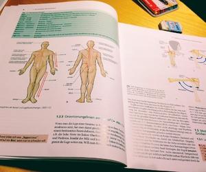 anatomy and medicine image