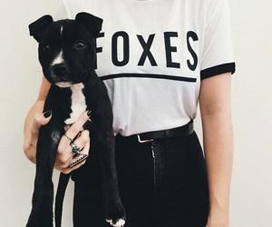 black, cool, and dog image