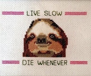 sloth, die, and funny image