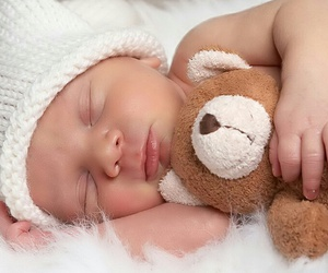 animals, babies, and baby image