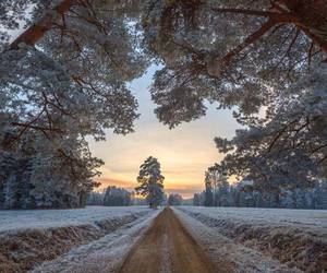 cold, countryside, and silence image