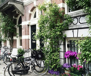 amsterdam and house image