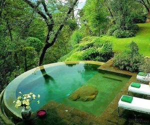 pool, nature, and green image