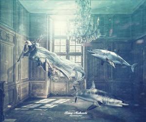 shark, fantasy, and water image