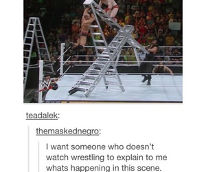 funny, tumblr, and wrestling image