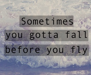 fall, fly, and quote image