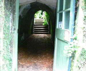 doorway, narnia, and photography image
