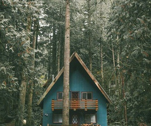 home, nature, and house image
