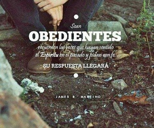sud and obediencia image