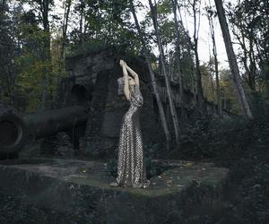 estonia, forest, and magic image