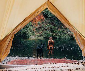 bikini, dog, and travel image