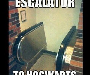 funny, hogwarts, and harry potter image